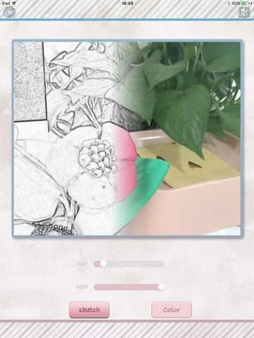 Color Sketch for photo sketch, sketch, black-and -white photo screenshot 7