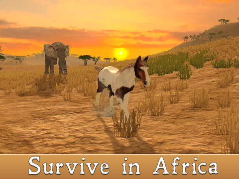 Wild African Horse: Animal Simulator 2017 screenshot 5
