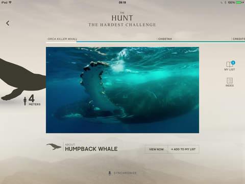 The Hunt - BBC Earth - Natural History Interactive TV Series screenshot 2