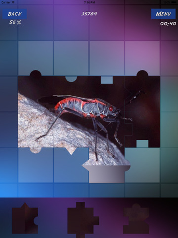 Insects Encyclopedia Puzzles screenshot 9