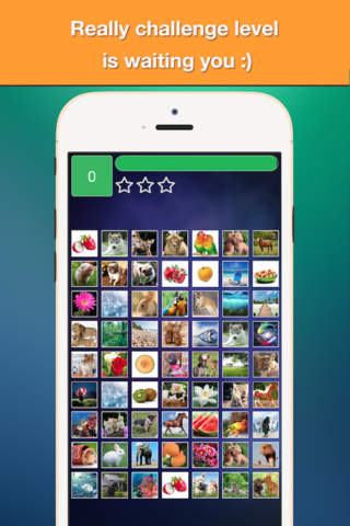 Find Double - Matching pair game with cute photos - náhled