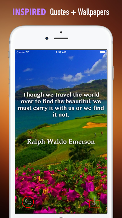 Kauai Wallpapers HD: Quotes Backgrounds with Art Pictures screenshot 5