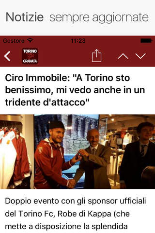 TorinoGranata.it - náhled