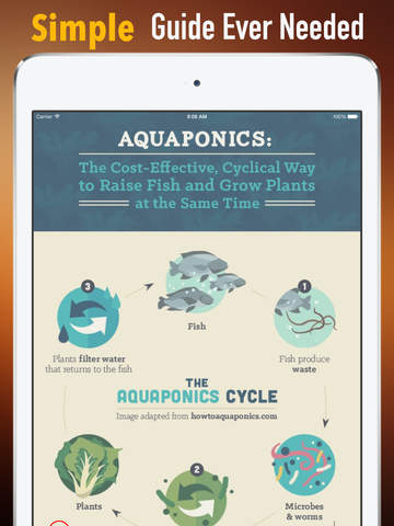 How to Make an Indoor Aquaponics System:Tips and Tutorial screenshot 7