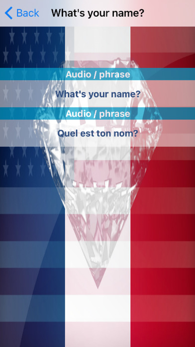 French Phrases Offline screenshot 3