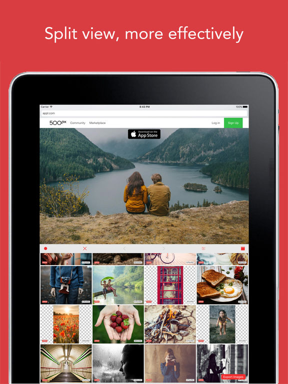 ImageCat Free - Grab any images on webpages screenshot 6