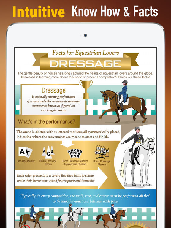 Equestrian Glossary: Cheatsheet with Study Guide screenshot 6