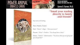 Power Animal Oracle Cards - Steven D. Farmer, Ph.D. screenshot 3