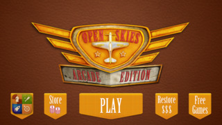 Ace Open Skies Plane Shooter screenshot 1