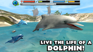 Dolphin Simulator screenshot 1
