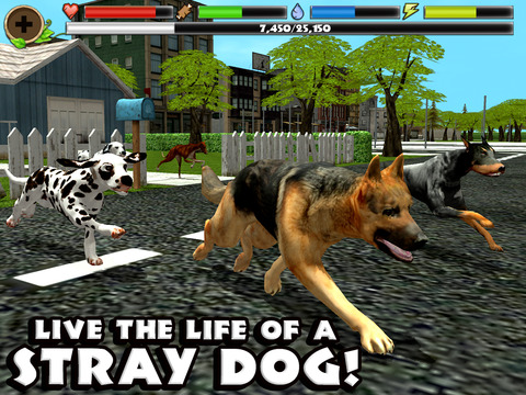 Stray Dog Simulator screenshot 6