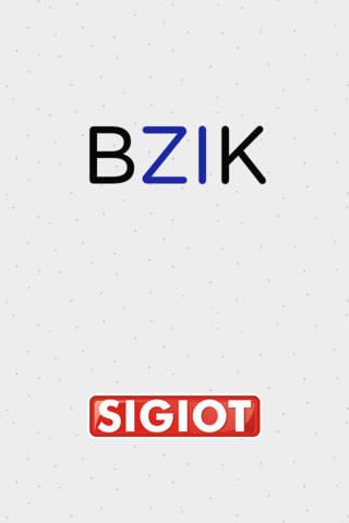 BZIK - náhled