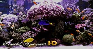 Peaceful Aquarium HD screenshot 1