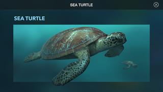 Amazing World OCEAN 3D screenshot 3