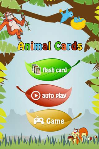 Animal Cards - náhled