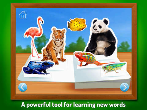 Zoo Animals ~ Touch, Look, Listen screenshot 7