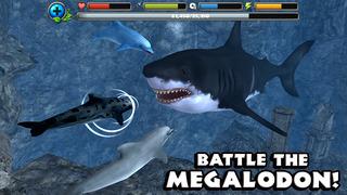 Dolphin Simulator screenshot 2