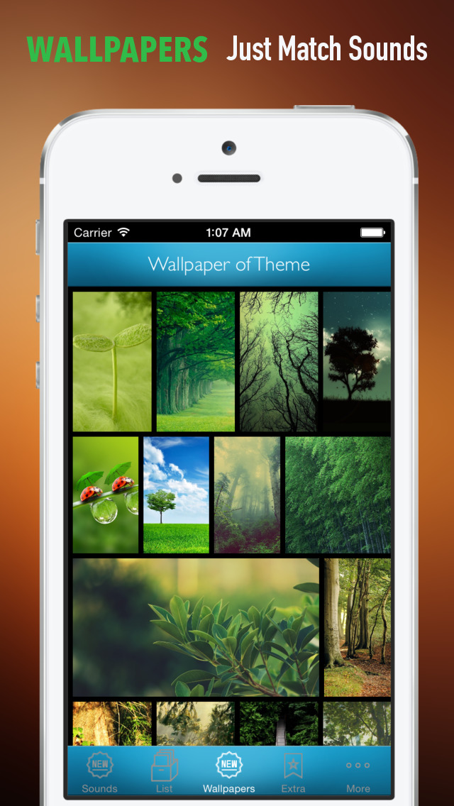 Nature Sounds Ringtones and Wallpapers: Theme your Phone to be back to the Nature screenshot 4