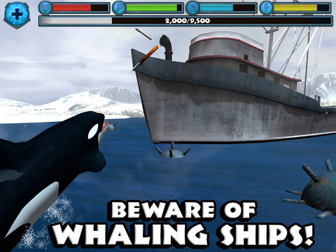 Orca Simulator screenshot 7