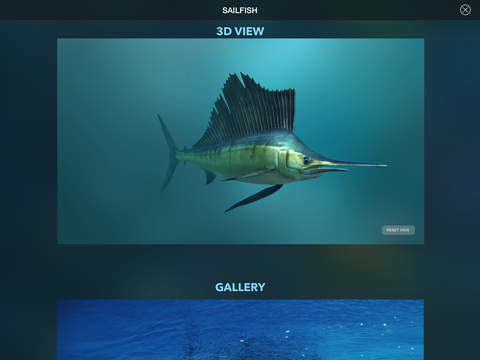 Amazing World OCEAN 3D screenshot 9