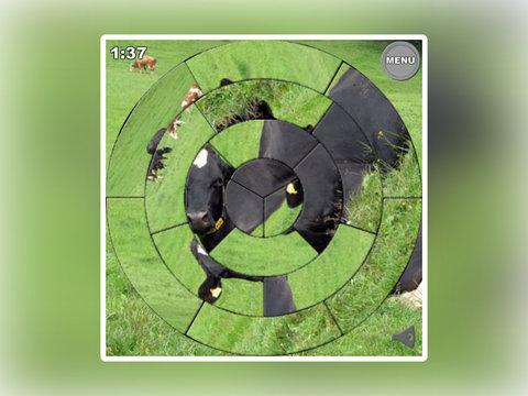 Jig Circle screenshot 8