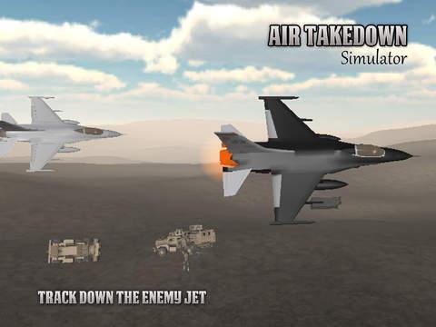 Air Takedown 3D Flight Simulator - náhled