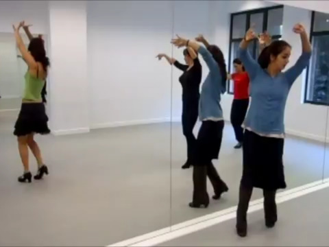 Flamenco Dance Steps screenshot 10