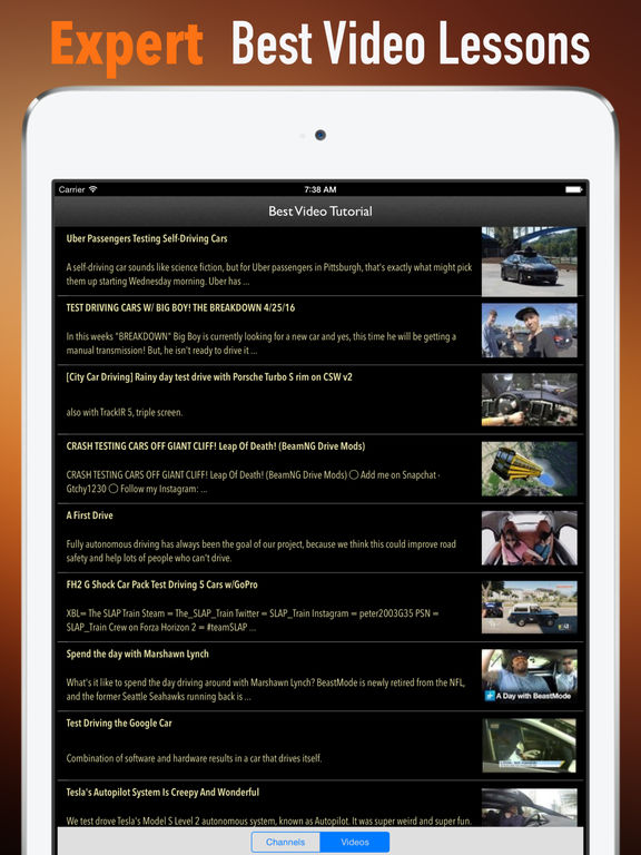 Test Driving:Traffic and Driver's Guide screenshot 8
