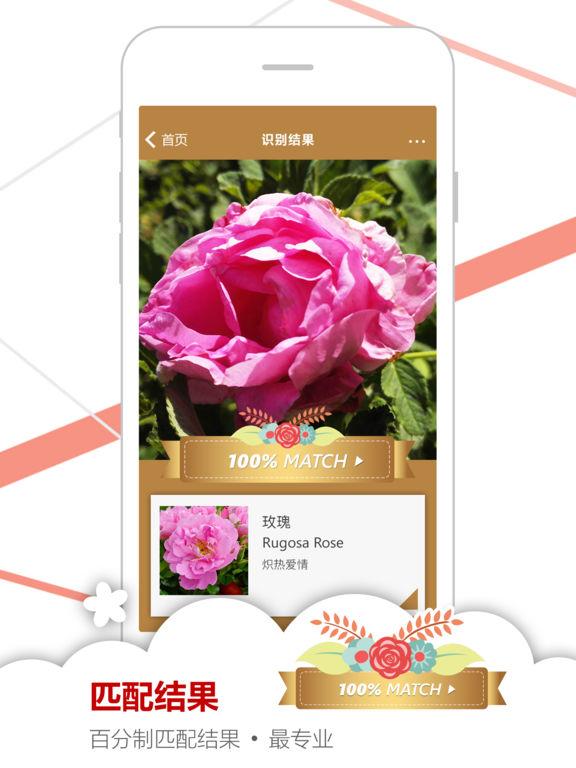 微软识花 screenshot 8