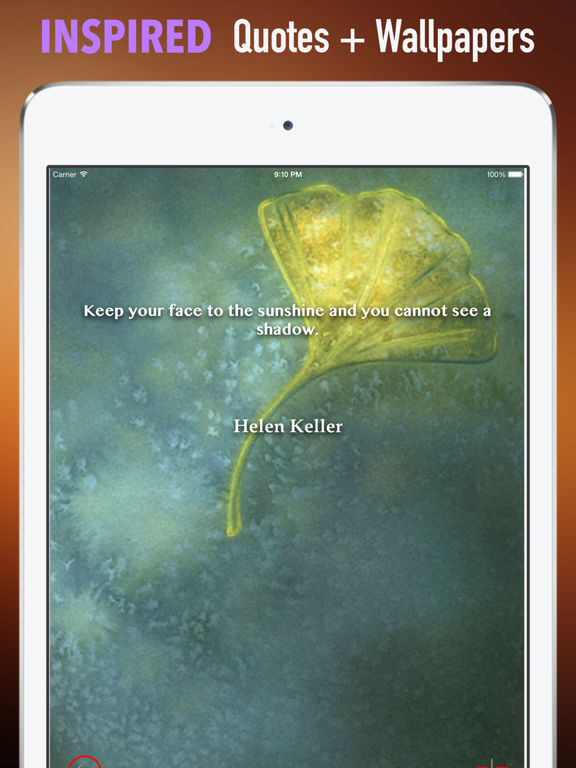 Ginkgo Wallpapers HD: Quotes Backgrounds with Art Pictures screenshot 10