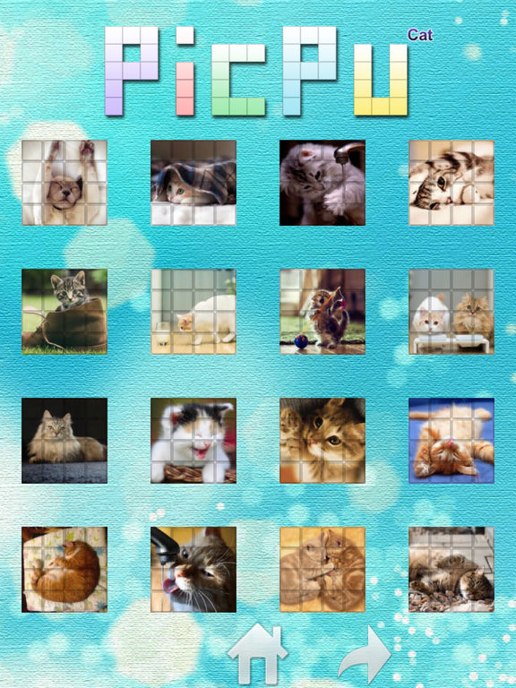 PicPu - Cat Picture Puzzle screenshot 7