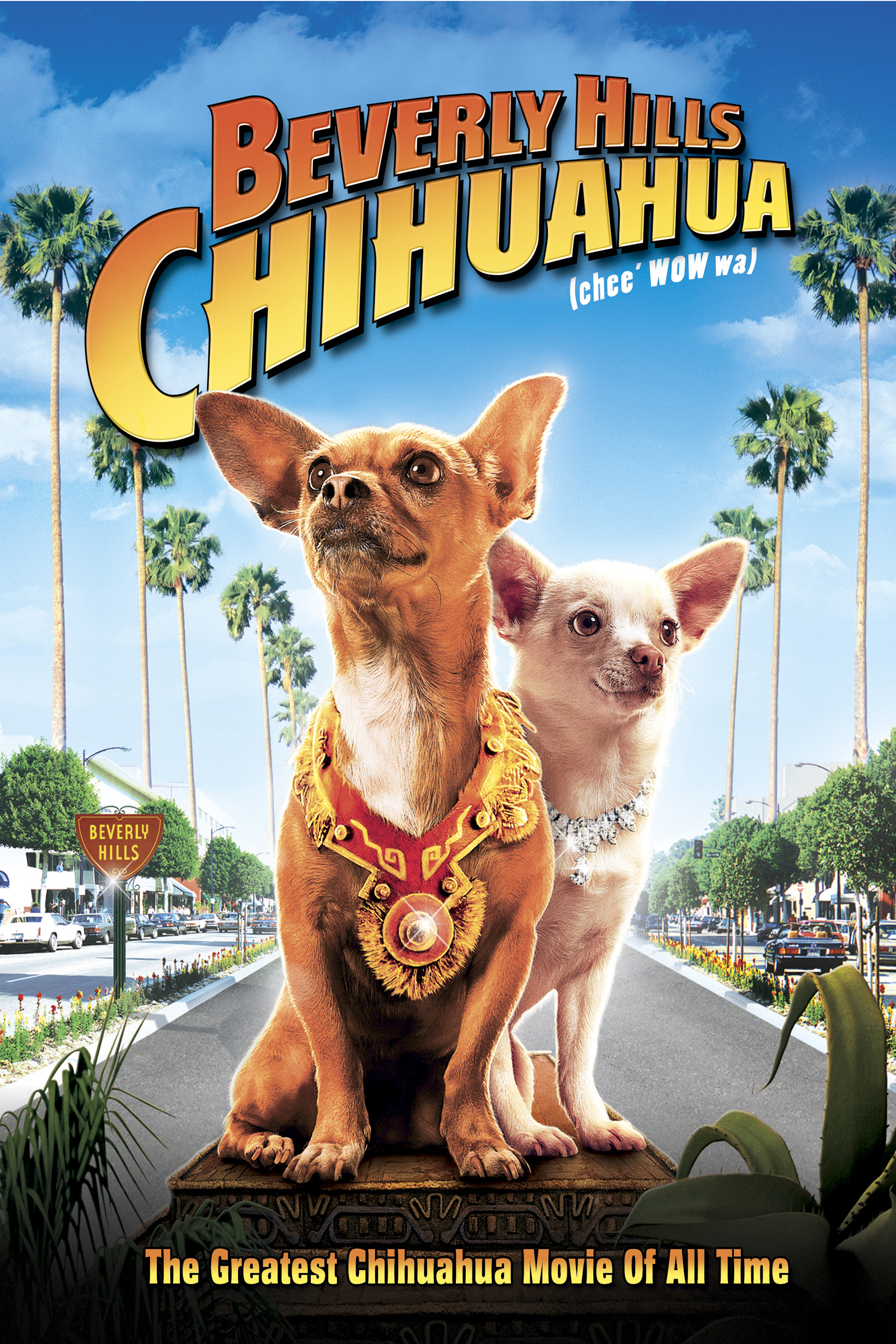 chihuahua movies itunes movies beverly hills chihuahua 9597